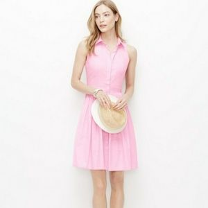 Ann Taylor Fit and Flare Pink Dress
